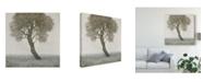 "Trademark Global Tim Otoole White Blossom Tree Canvas Art - 15"" x 20"""