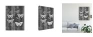 """Trademark Global Jennifer Goldberger Rustic Butterfly Chart I Canvas Art - 37"""" x 49"""""""