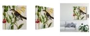 "Trademark Global John James Audubon Avian Crop II Canvas Art - 15"" x 20"""