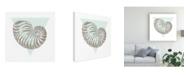 "Trademark Global Wild Apple Portfolio Conchology Sketches II Canvas Art - 15"" x 20"""