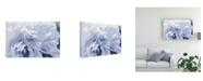 """Trademark Global Moira Hershey Peony Delight Canvas Art - 20"""" x 25"""""""