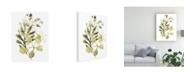 "Trademark Global June Erica Vess Lichen and Leaves II Canvas Art - 20"" x 25"""