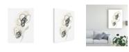 "Trademark Global June Erica Vess Monochrome Floral Study II Canvas Art - 20"" x 25"""
