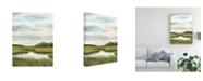 "Trademark Global Naomi Mccavitt Marsh Landscapes II Canvas Art - 20"" x 25"""