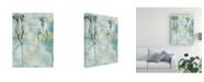 "Trademark Global Naomi Mccavitt Botanical Abstract II Canvas Art - 37"" x 49"""