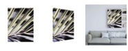 """Trademark Global Incado Close up IX Canvas Art - 15.5"""" x 21"""""""