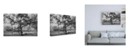 "Trademark Global Svetlin Yosifov Mursi Composition Canvas Art - 15.5"" x 21"""