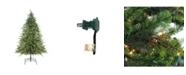Northlight 9' Pre-Lit Hunter Fir Full Artificial Christmas Tree - Clear Lights