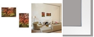"""Trendy Decor 4U First Colors of Fall I 2-Piece Vignette by Moises Levy, White Frame, 21"""" x 15"""""""