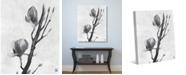 "Creative Gallery Tulip Tree Flowers in Black White 20"" x 16"" Canvas Wall Art Print"
