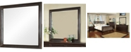 Furniture of America Klinnet Transitional Mirror