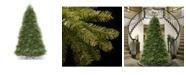 National Tree Company National Tree 12' Dunhill Fir Hinged Tree