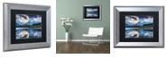 "Trademark Global Michael Blanchette Photography 'Vermillion' Matted Framed Art, 11"" x 14"""