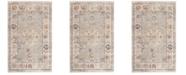Safavieh Illusion Light Gray and Cream 3' x 5' Area Rug