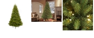 Puleo International 7.5 ft. Pre-Lit Franklin Fir Artificial Christmas Tree with 750 Clear UL listed Lights