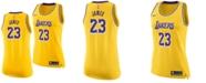 Nike Women's LeBron James Los Angeles Lakers Icon Swingman Jersey