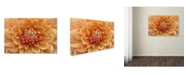 "Trademark Global Cora Niele 'Orange Dahlia' Canvas Art - 32"" x 22"" x 2"""