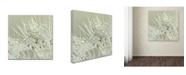 "Trademark Global Cora Niele 'Dandelion Dew III' Canvas Art - 24"" x 24"" x 2"""