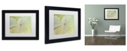"Trademark Global Cora Niele 'Dewy Dandelion' Matted Framed Art - 11"" x 14"" x 0.5"""