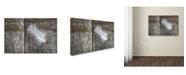 "Trademark Global Cora Niele 'Feather on Wood II' Canvas Art - 19"" x 12"" x 2"""