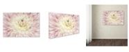 "Trademark Global Cora Niele 'Dahlia Flower' Canvas Art - 32"" x 22"" x 2"""