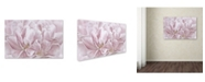 "Trademark Global Cora Niele 'Double Pink Tulip' Canvas Art - 47"" x 30"" x 2"""