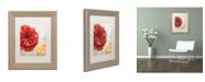 "Trademark Global Color Bakery 'Red Poppy' Matted Framed Art - 11"" x 0.5"" x 14"""