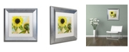 "Trademark Global Color Bakery 'Soleil I' Matted Framed Art - 11"" x 0.5"" x 11"""