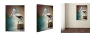 "Trademark Global Jai Johnson 'Perched Pelican' Canvas Art - 32"" x 24"" x 2"""