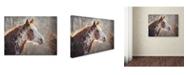 "Trademark Global Jai Johnson 'No Sharing Horse' Canvas Art - 24"" x 18"" x 2"""