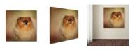 "Trademark Global Jai Johnson 'Proud Pomeranian' Canvas Art - 14"" x 14"" x 2"""
