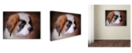 "Trademark Global Jai Johnson 'Saint Bernard Puppy Portrait' Canvas Art - 32"" x 24"" x 2"""