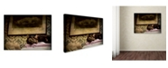 "Trademark Global Jai Johnson 'Soft Place To Fall' Canvas Art - 32"" x 24"" x 2"""