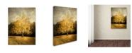 "Trademark Global Jai Johnson 'Beginning Of Autumn' Canvas Art - 24"" x 18"" x 2"""