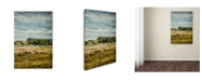 "Trademark Global Jai Johnson 'Country Ensemble' Canvas Art - 19"" x 12"" x 2"""