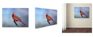 """Trademark Global Jai Johnson 'Cardinal At First Frost' Canvas Art - 24"""" x 18"""" x 2"""""""