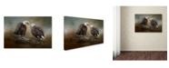 "Trademark Global Jai Johnson 'Quiet Conversation Bald Eagles' Canvas Art - 24"" x 16"" x 2"""