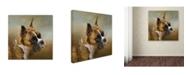 "Trademark Global Jai Johnson 'Golden Brindle Boxer' Canvas Art - 35"" x 35"" x 2"""