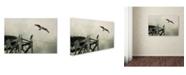 "Trademark Global Jai Johnson 'Ospreys At Pickwick' Canvas Art - 24"" x 16"" x 2"""