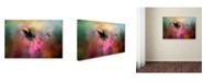 "Trademark Global Jai Johnson 'Garden Friend 1' Canvas Art - 19"" x 12"" x 2"""