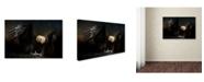 "Trademark Global Jai Johnson 'Fresh Catch' Canvas Art - 32"" x 22"" x 2"""