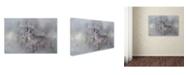 "Trademark Global Jai Johnson 'Meeting Winter Head On' Canvas Art - 19"" x 12"" x 2"""