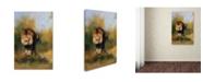 "Trademark Global Jai Johnson 'Spring Lion 1' Canvas Art - 19"" x 12"" x 2"""