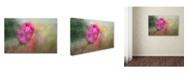 "Trademark Global Jai Johnson 'Bring Back Spring' Canvas Art - 19"" x 12"" x 2"""