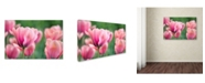 "Trademark Global Cora Niele 'Pink Tulips' Canvas Art - 47"" x 30"" x 2"""