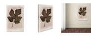 "Trademark Global Cora Niele 'Sepia Grape Leaf' Canvas Art - 24"" x 16"" x 2"""