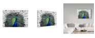 "Trademark Global Dana Brett Munach 'Blam' Canvas Art - 32"" x 22"" x 2"""
