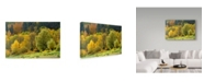"Trademark Global Cora Niele 'Autumn Trees' Canvas Art - 47"" x 30"" x 2"""