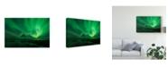 "Trademark Global David Martin Castan 'Bright Lights In Green' Canvas Art - 47"" x 2"" x 30"""