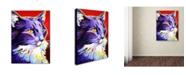 "Trademark Global DawgArt 'Cat Kelsier' Canvas Art - 35"" x 47"" x 2"""